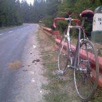 biciclete munte