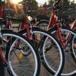 bicicleta-rosie-2012-018-682×1024